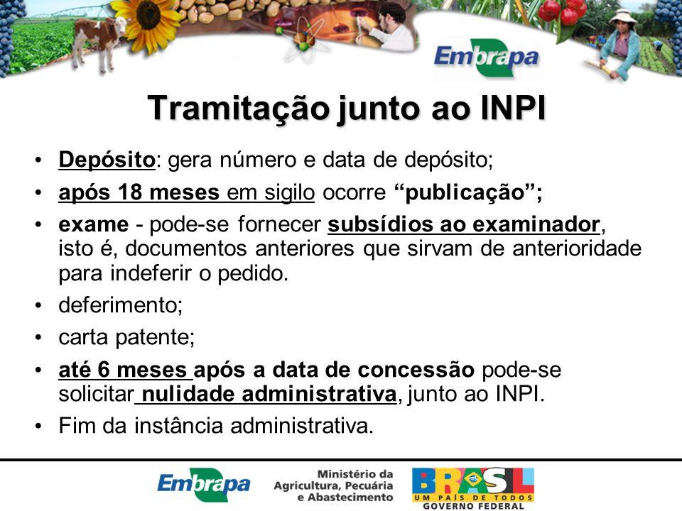 Tramitação junto ao INPI