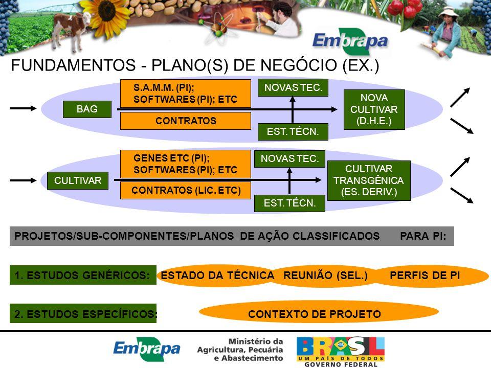 FUNDAMENTOS - PLANO(S) DE NEGÓCIO (EX.)