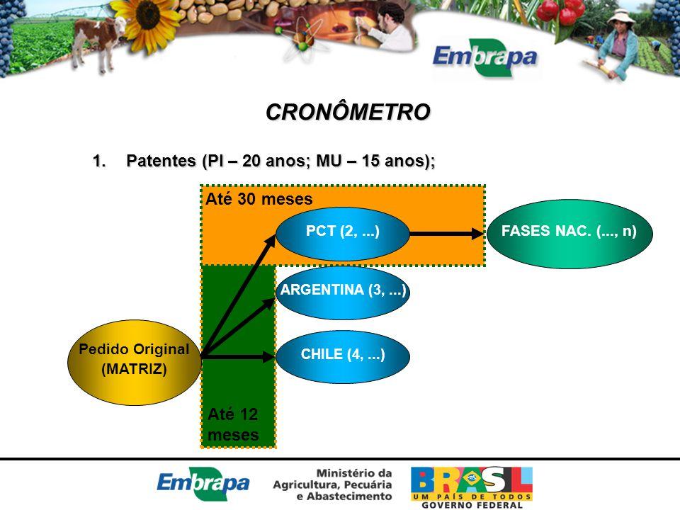 CRONÔMETRO Patentes (PI – 20 anos; MU – 15 anos); Até 30 meses