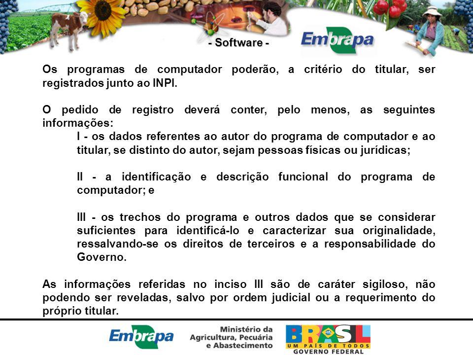 - Software - Os programas de computador poderão, a critério do titular, ser registrados junto ao INPI.