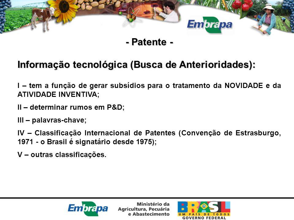 Informação tecnológica (Busca de Anterioridades):