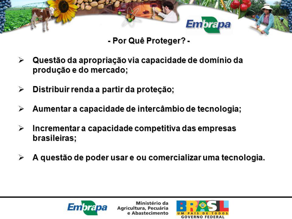 - Por Quê Proteger - Questão da apropriação via capacidade de domínio da produção e do mercado; Distribuir renda a partir da proteção;