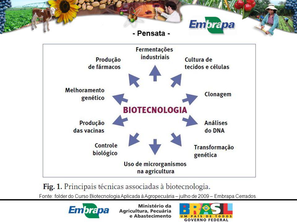 - Pensata - Fonte: folder do Curso Biotecnologia Aplicada à Agropecuária – julho de 2009 – Embrapa Cerrados.