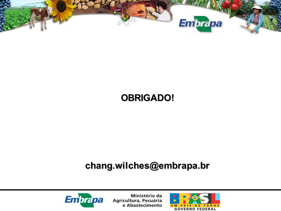 OBRIGADO! chang.wilches@embrapa.br