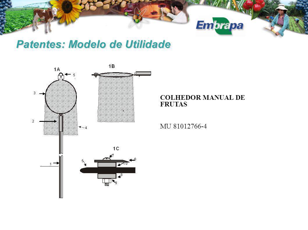 Patentes: Modelo de Utilidade