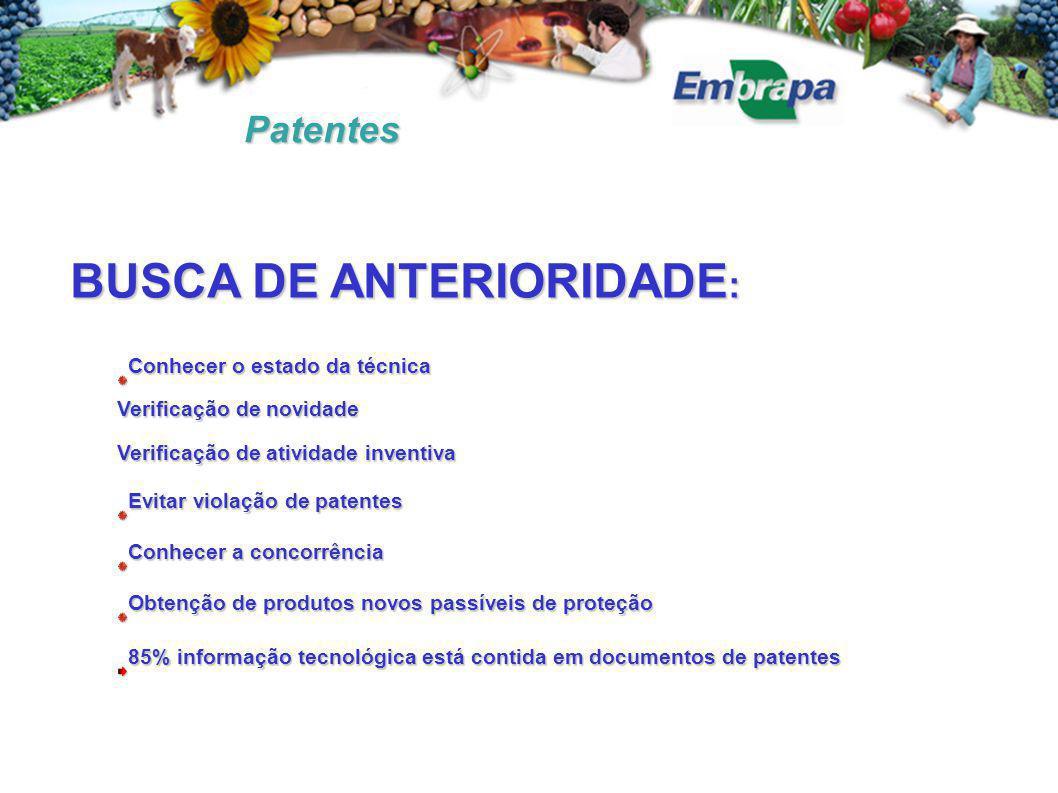 BUSCA DE ANTERIORIDADE: