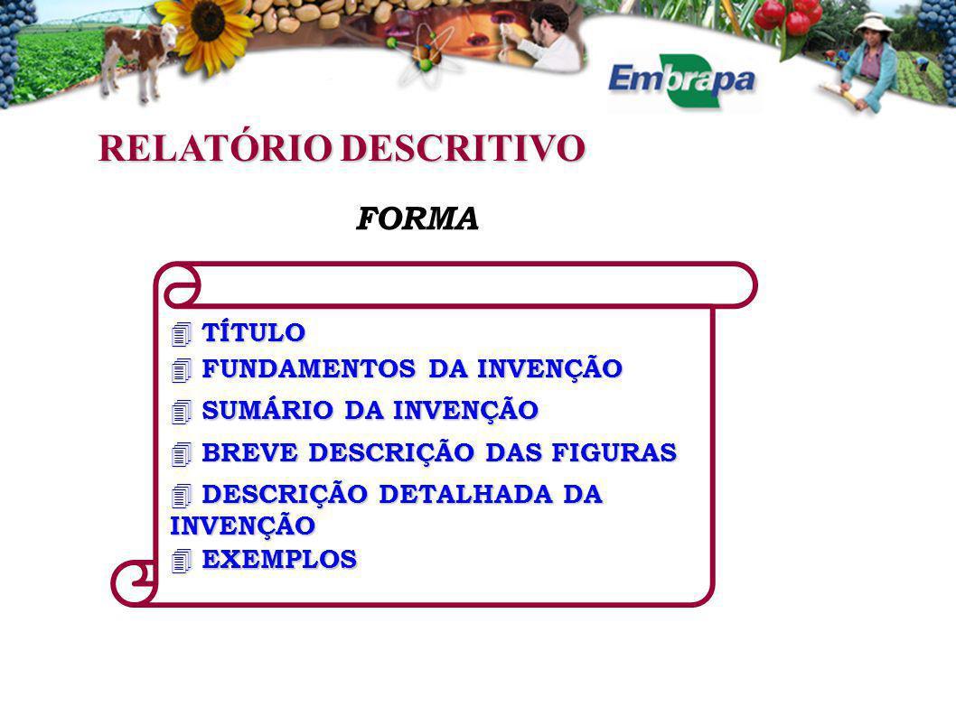 RELATÓRIO DESCRITIVO FORMA  TÍTULO  FUNDAMENTOS DA INVENÇÃO