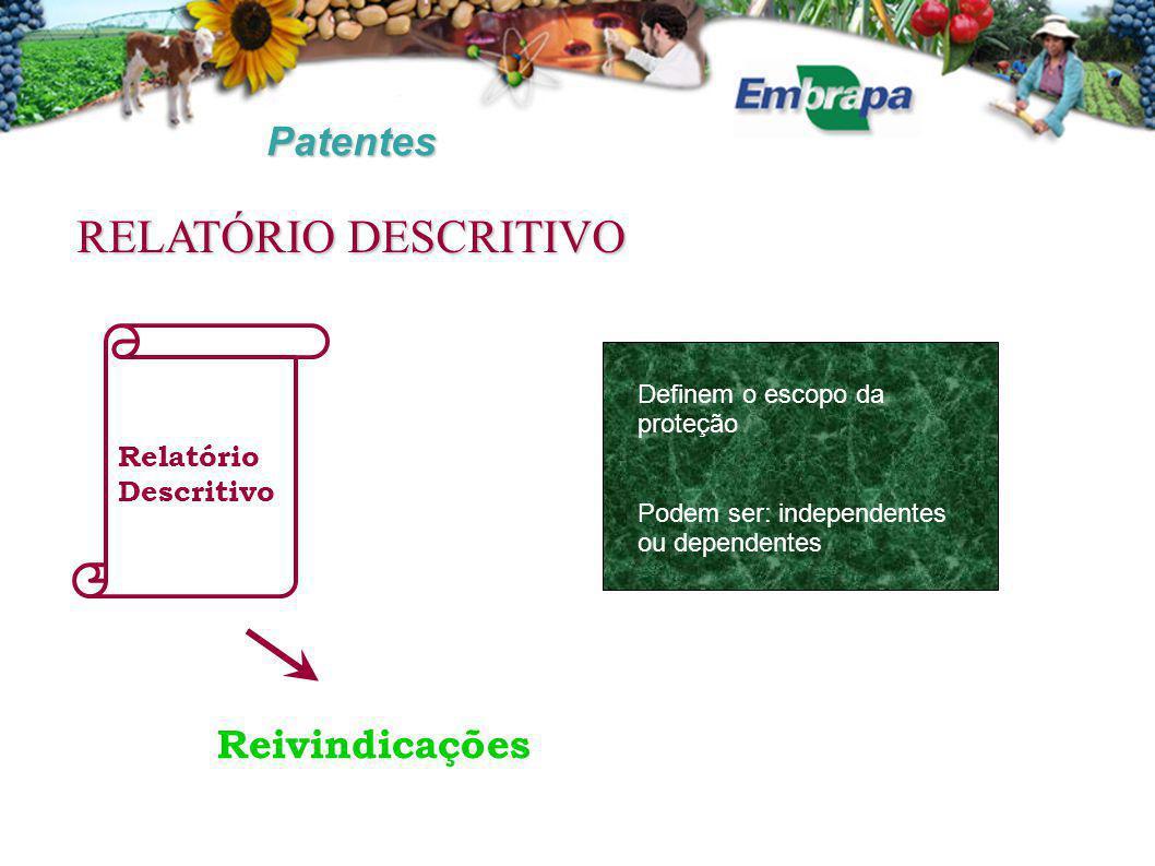 RELATÓRIO DESCRITIVO Patentes Reivindicações Relatório Descritivo