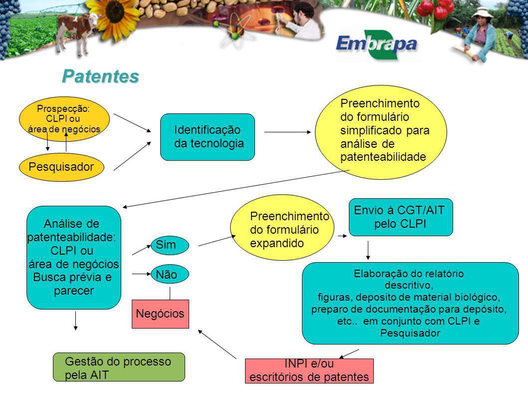 Patentes Prospecção: CLPI ou. área de negócios. Preenchimento do formulário simplificado para análise de patenteabilidade.