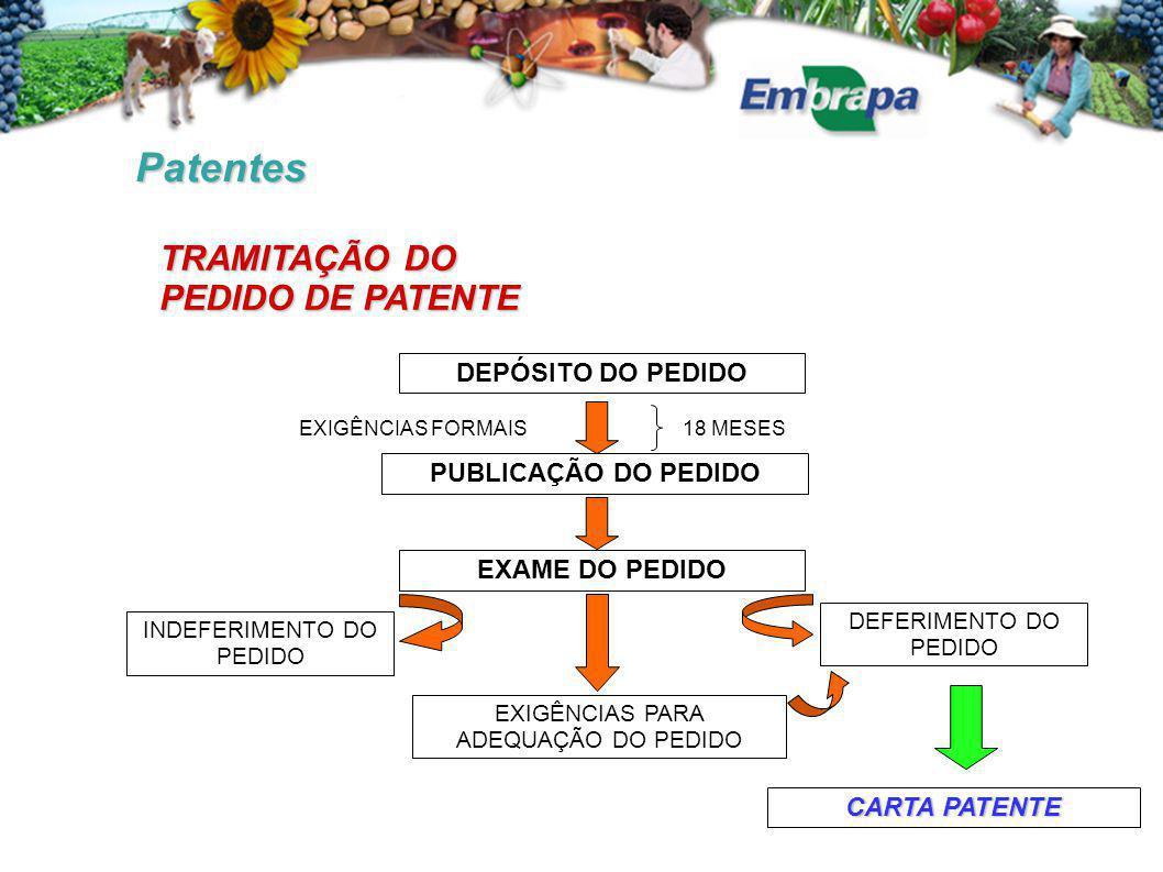 Patentes TRAMITAÇÃO DO PEDIDO DE PATENTE DEPÓSITO DO PEDIDO