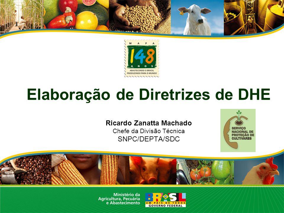 Elaboração de Diretrizes de DHE Ricardo Zanatta Machado