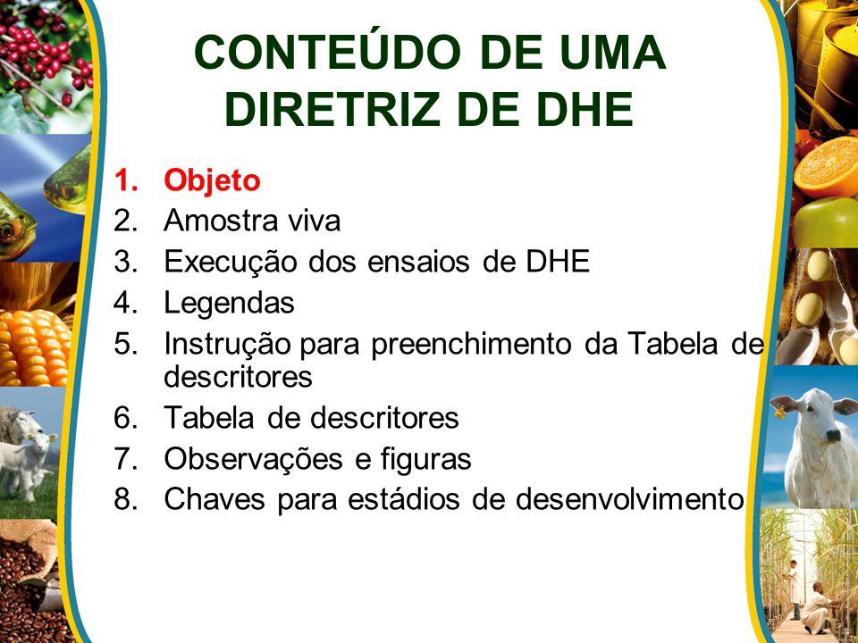 CONTEÚDO DE UMA DIRETRIZ DE DHE