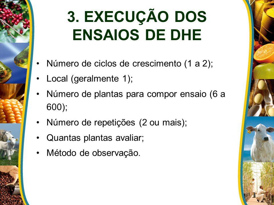 3. EXECUÇÃO DOS ENSAIOS DE DHE
