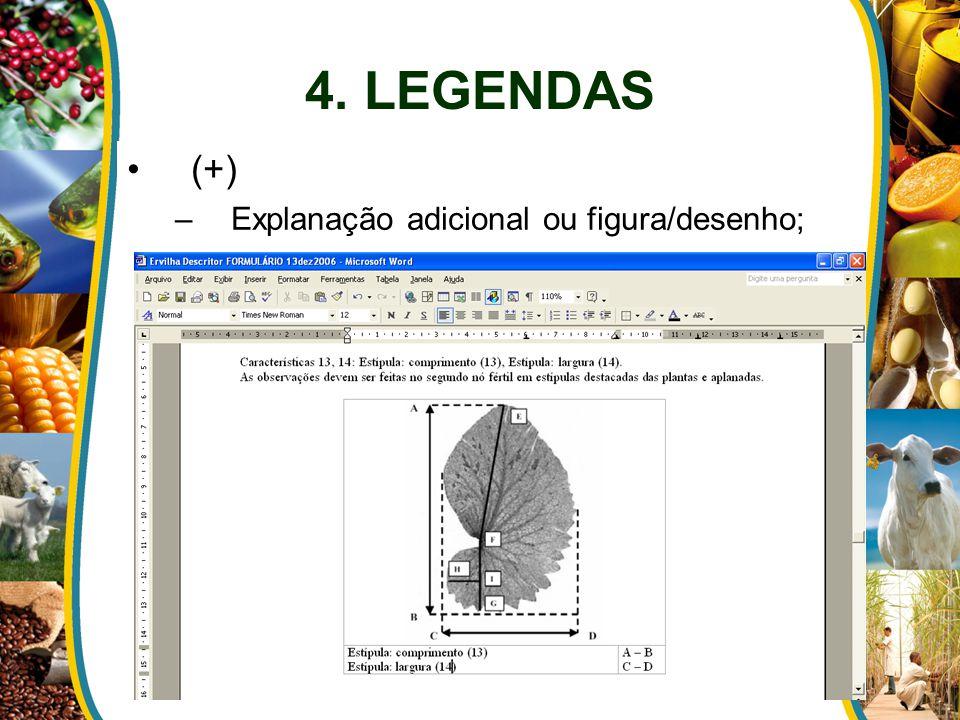 4. LEGENDAS (+) Explanação adicional ou figura/desenho;