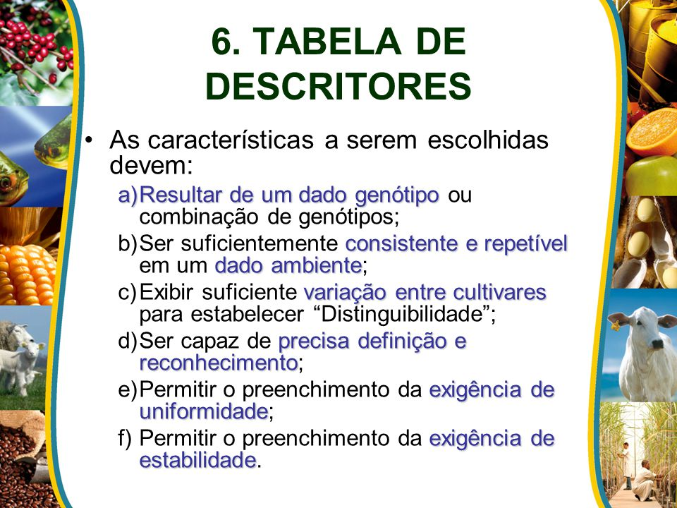 6. TABELA DE DESCRITORES As características a serem escolhidas devem: