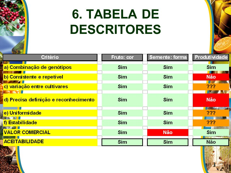 6. TABELA DE DESCRITORES