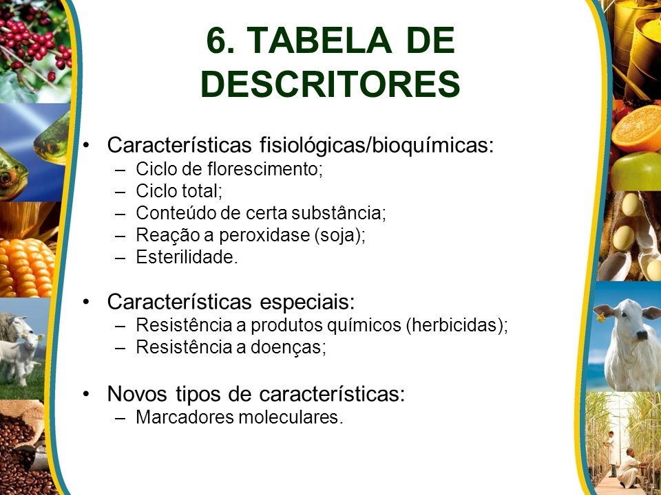 6. TABELA DE DESCRITORES Características fisiológicas/bioquímicas:
