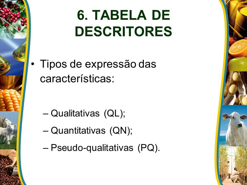 6. TABELA DE DESCRITORES Tipos de expressão das características: