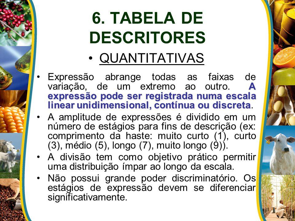 6. TABELA DE DESCRITORES QUANTITATIVAS