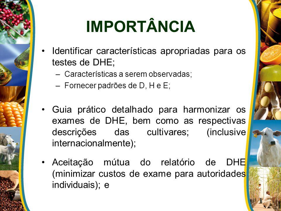 IMPORTÂNCIA Identificar características apropriadas para os testes de DHE; Características a serem observadas;