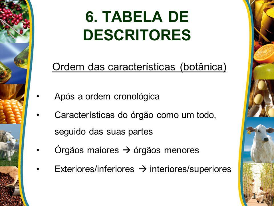 Ordem das características (botânica)