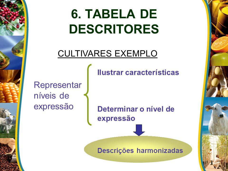 6. TABELA DE DESCRITORES CULTIVARES EXEMPLO
