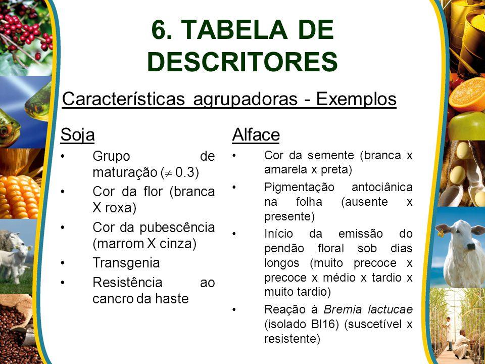 Características agrupadoras - Exemplos
