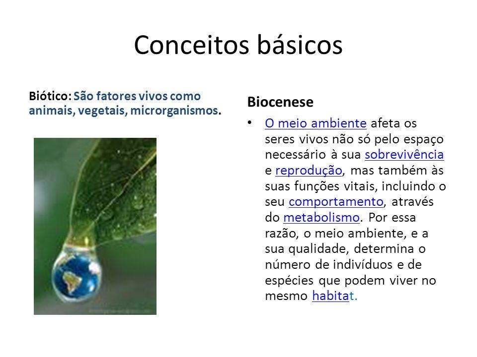Conceitos básicos Biocenese