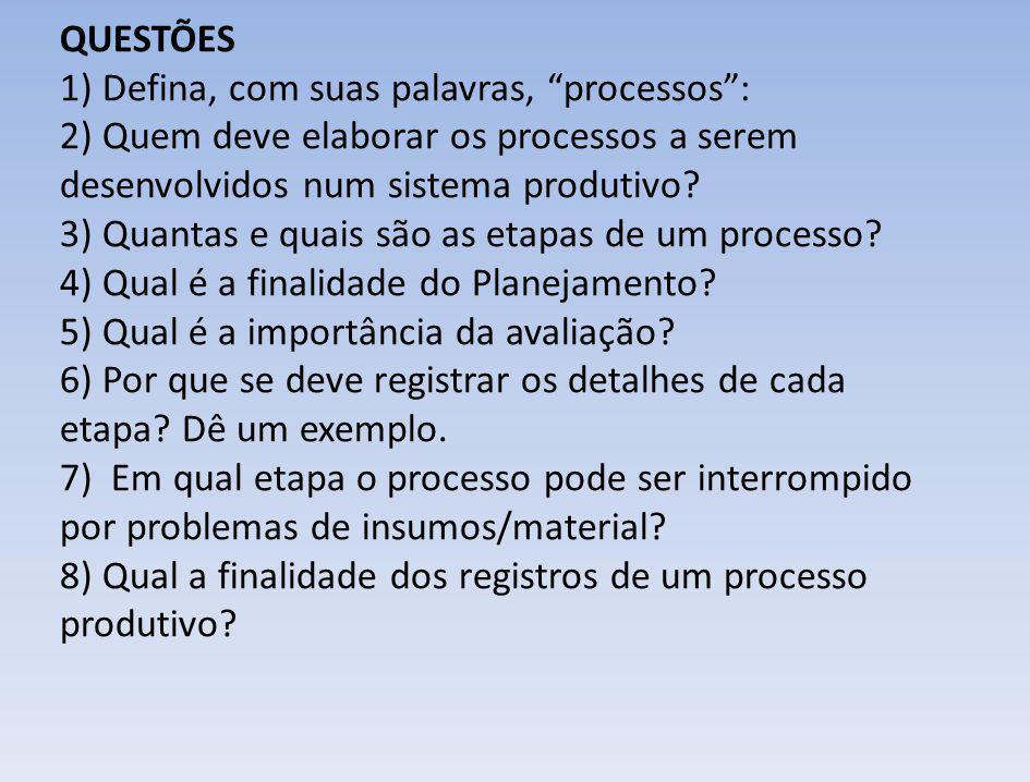 QUESTÕES 1) Defina, com suas palavras, processos : 2) Quem deve elaborar os processos a serem desenvolvidos num sistema produtivo.