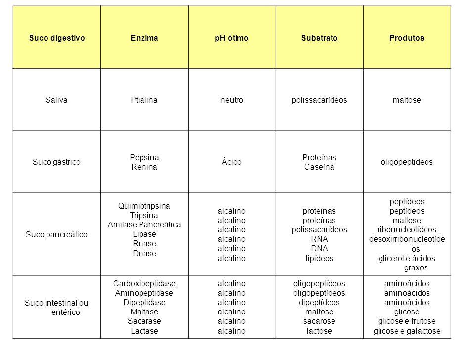 Suco digestivo Enzima pH ótimo Substrato Produtos