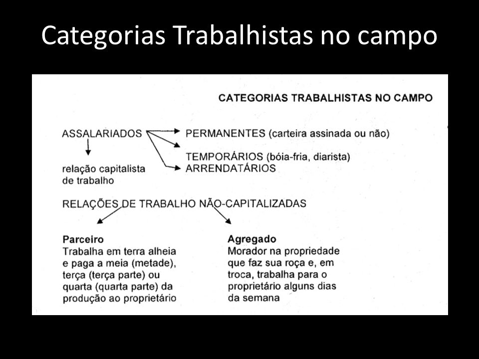 Categorias Trabalhistas no campo
