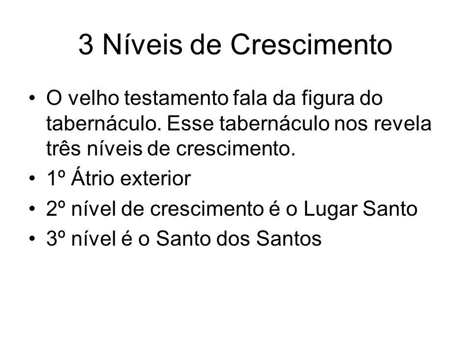 3 Níveis de Crescimento O velho testamento fala da figura do tabernáculo. Esse tabernáculo nos revela três níveis de crescimento.