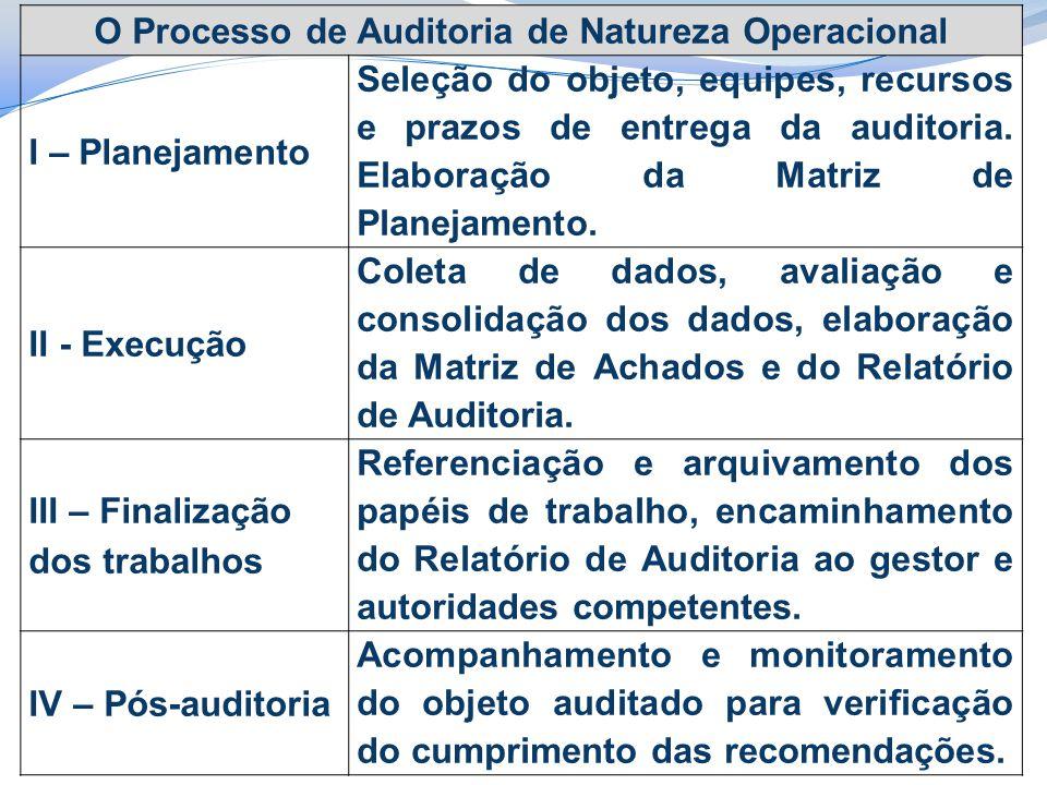 O Processo de Auditoria de Natureza Operacional