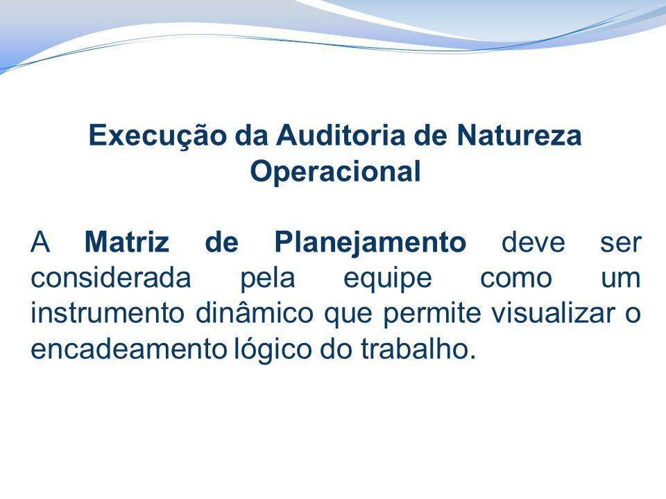 Execução da Auditoria de Natureza Operacional