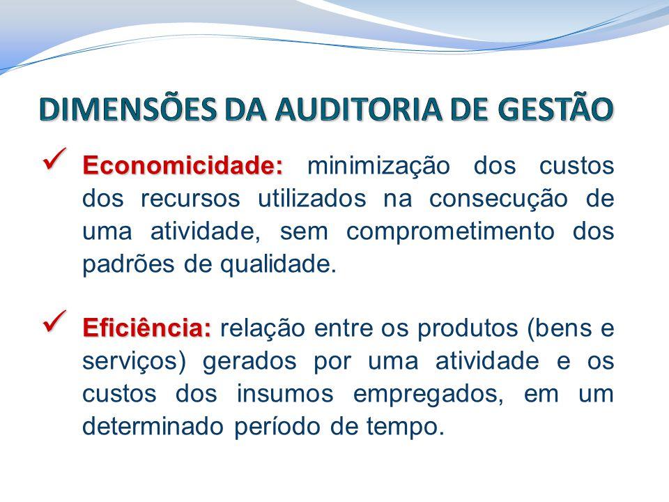 DIMENSÕES DA AUDITORIA DE GESTÃO