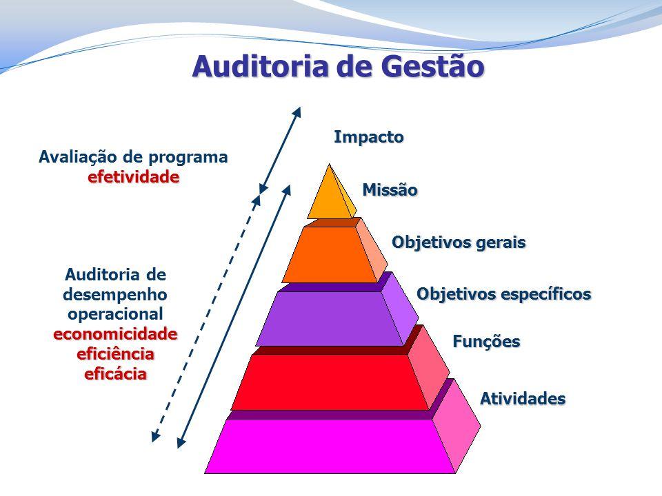 Objetivos específicos Auditoria de desempenho