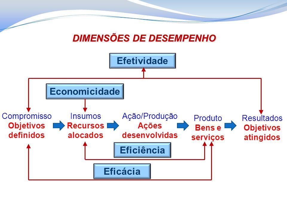 DIMENSÕES DE DESEMPENHO