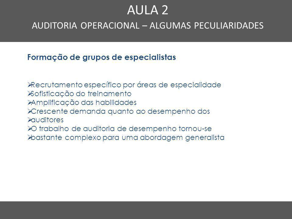 AUDITORIA OPERACIONAL – ALGUMAS PECULIARIDADES