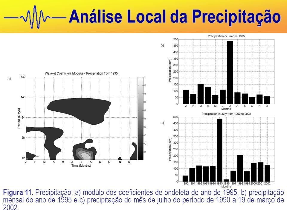 Análise Local da Precipitação