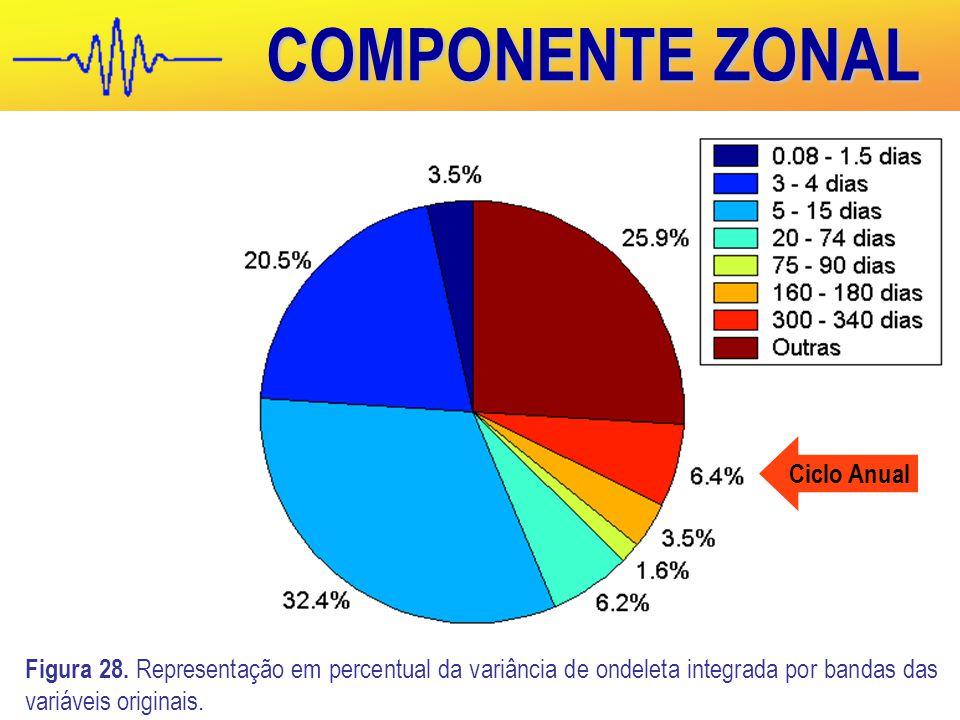 COMPONENTE ZONAL Ciclo Anual