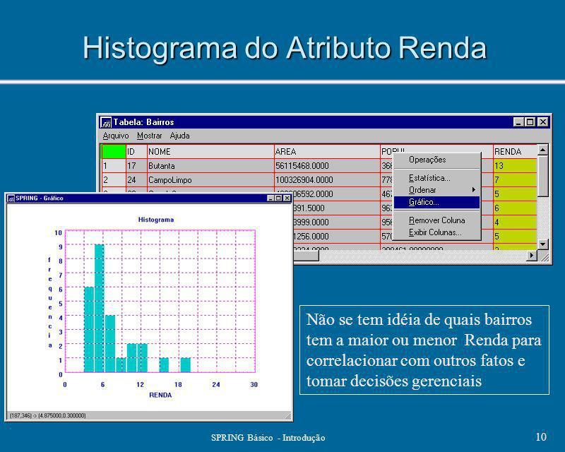 Histograma do Atributo Renda