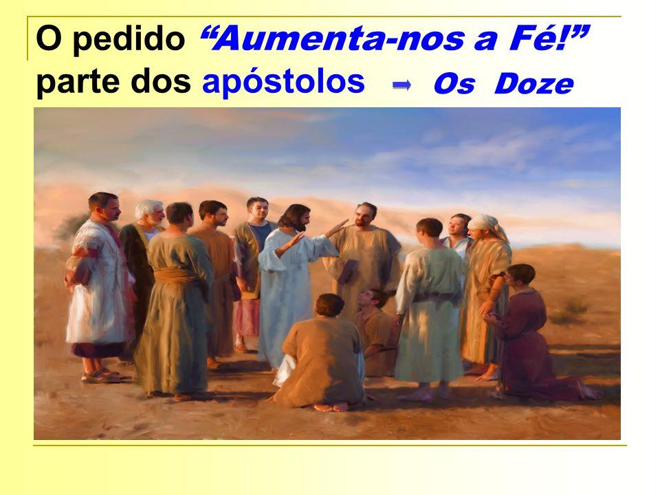 O pedido Aumenta-nos a Fé! parte dos apóstolos