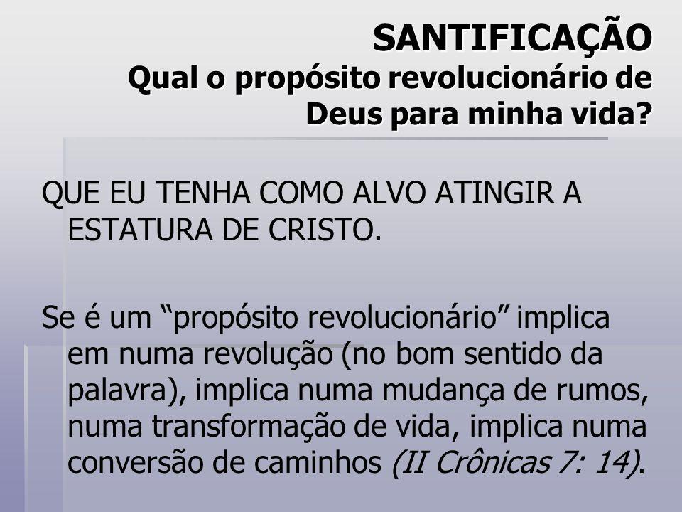 SANTIFICAÇÃO Qual o propósito revolucionário de Deus para minha vida