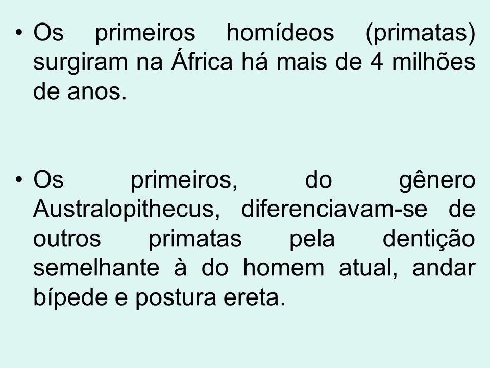 Os primeiros homídeos (primatas) surgiram na África há mais de 4 milhões de anos.