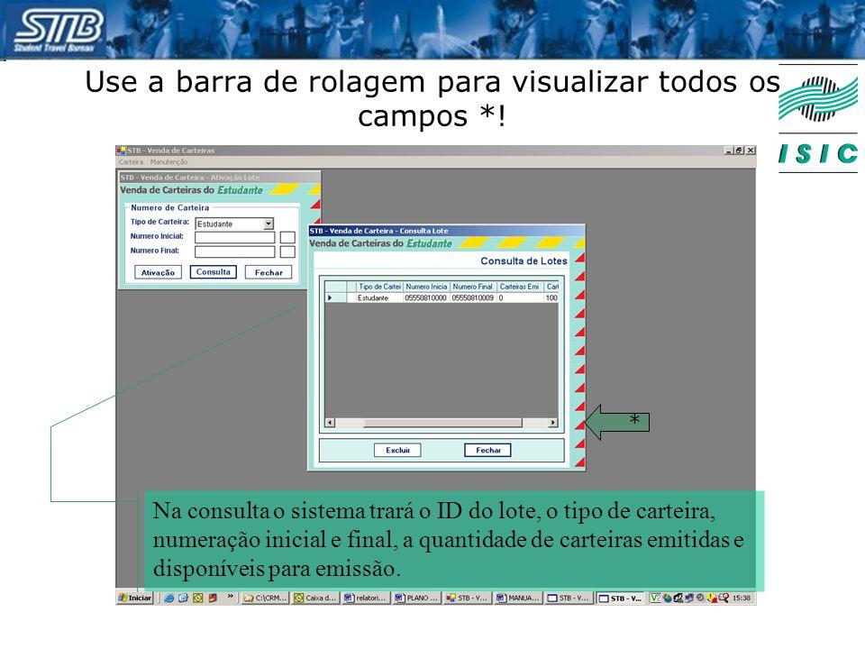 Use a barra de rolagem para visualizar todos os campos *!