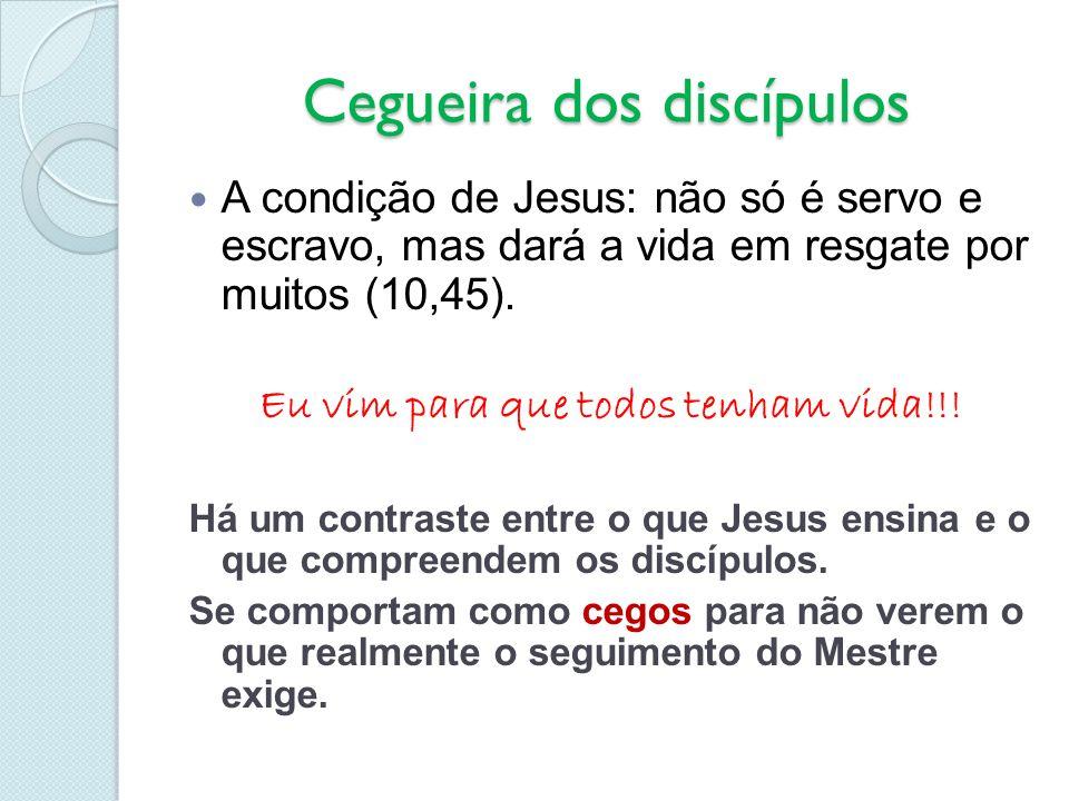 Cegueira dos discípulos