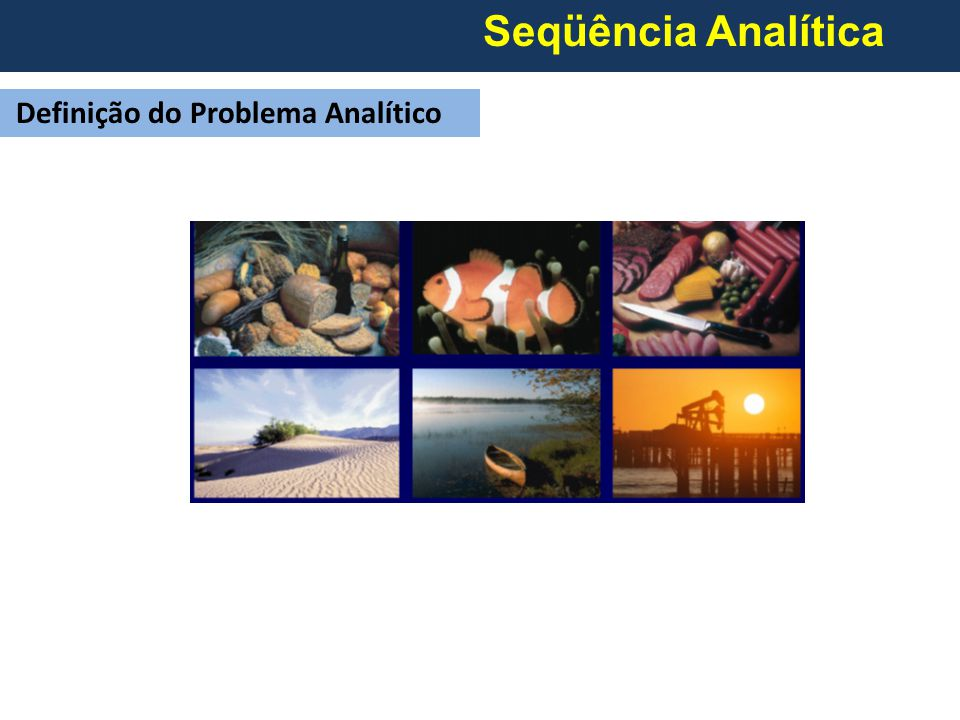 Seqüência Analítica Definição do Problema Analítico
