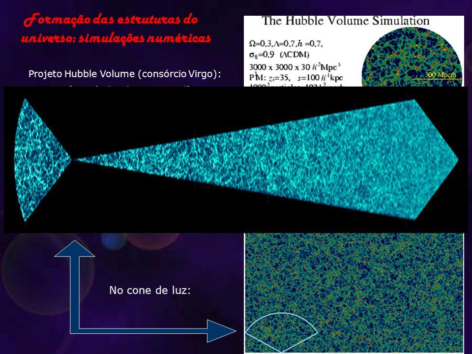 Formação das estruturas do universo: simulações numéricas