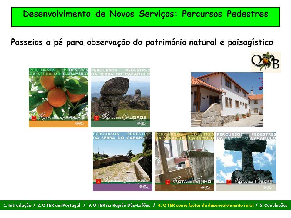 Desenvolvimento de Novos Serviços: Percursos Pedestres