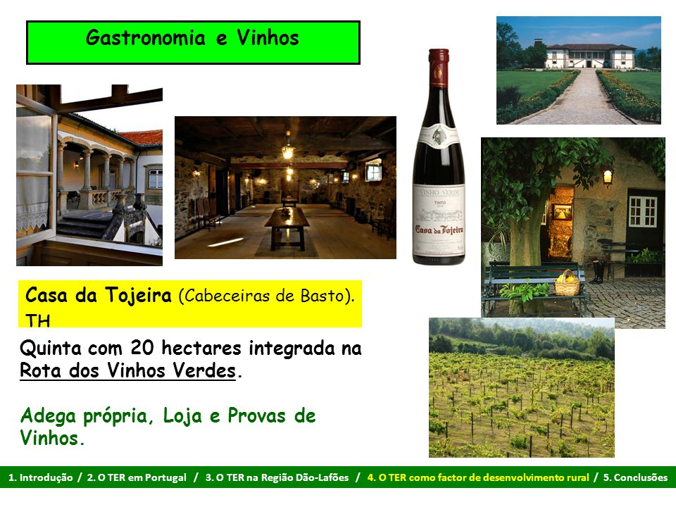 Gastronomia e Vinhos Casa da Tojeira (Cabeceiras de Basto).
